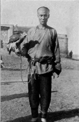 A Chinese falconer with Goshawk from