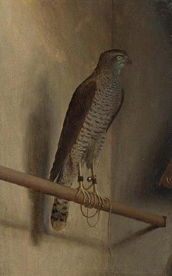 A Sparrowhawk. 1510s Jacopo de' Barbari, or Jacob Walch (c.1450-c.1516)