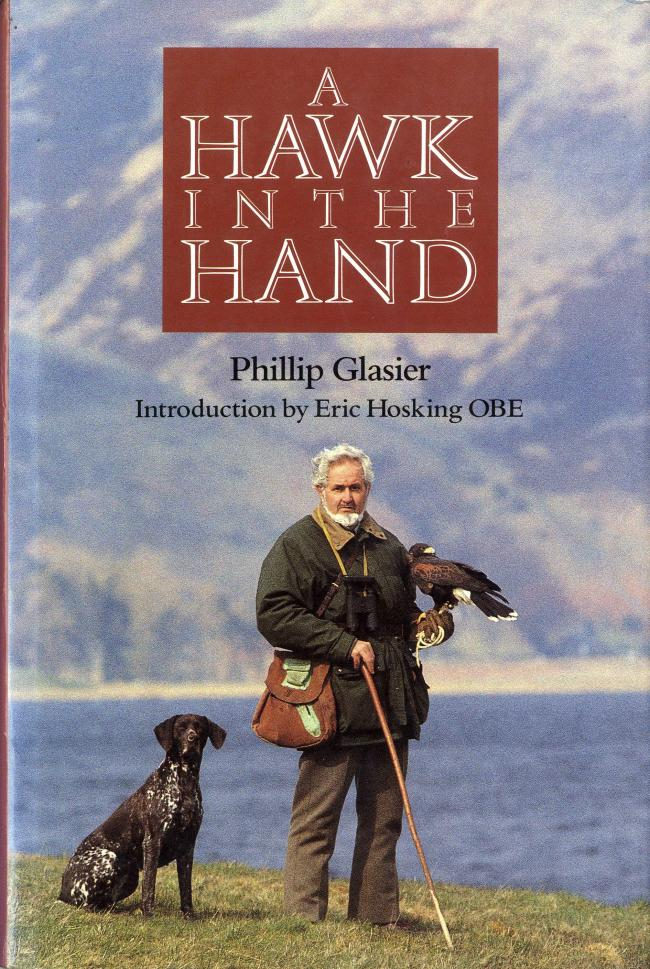 A Hawk in the Hand by Phillip Glasier