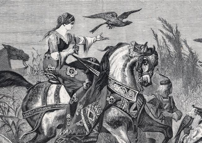Falconry Woman Riding Horse Sidesaddle & Greyhound 1860s Antique Print & Article
