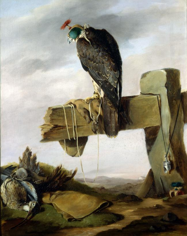A Peregrine Falcon on a broken Fence, a Curlew and Falconry Accoutrements below