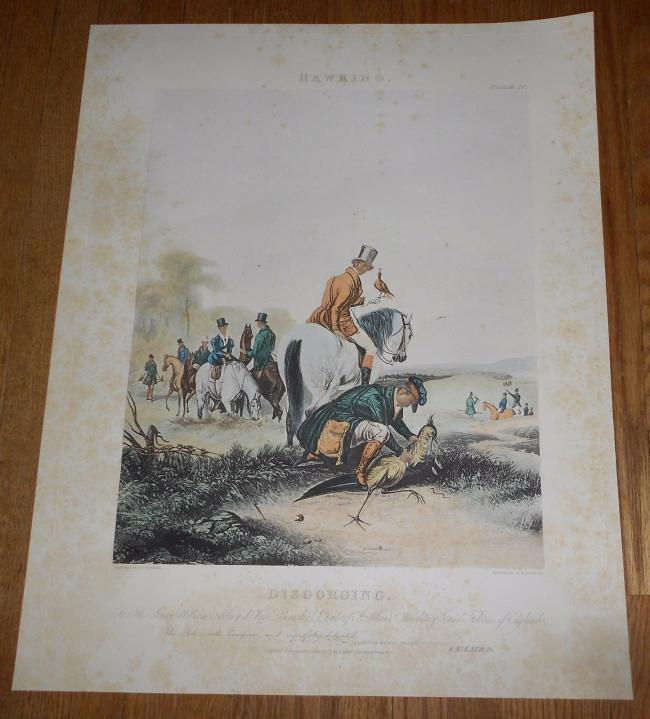 1839 Antique Print of Hawking Falconry Falconer - Hand-colored aquatint by Reeve 2