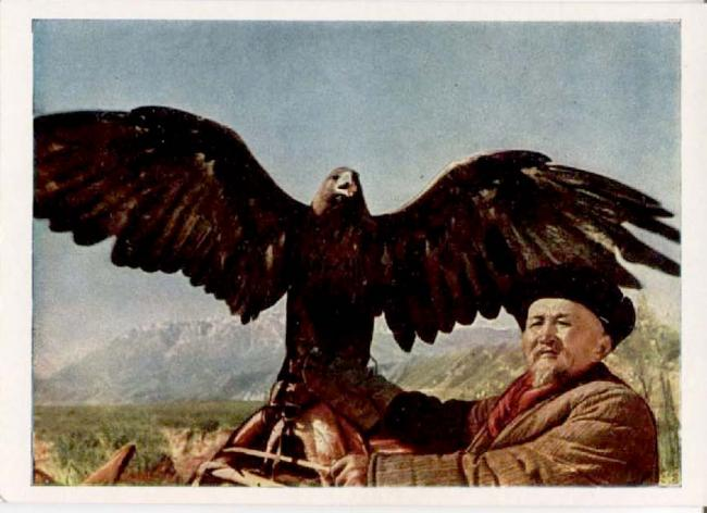 Kirghiz Falconer with Eagle by David Sholomovich (1914-1965) postcard of 1960-1969