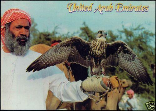 United Arab Emirates, Trainer with Falcon. Falconer