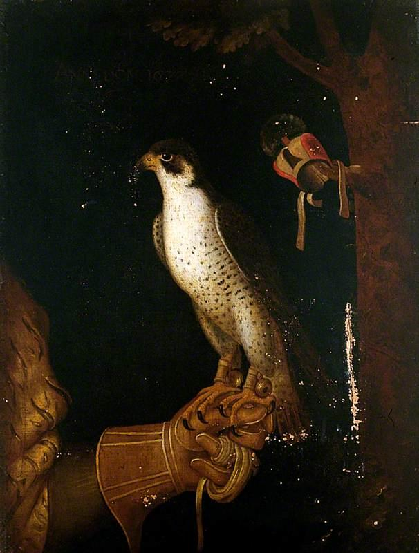 A Falcon on a Gloved Hand by unknown artist from York Museums Trust